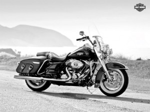 Dan's bike (Thank you to Harley-Davidson for such a beautiful pic.)