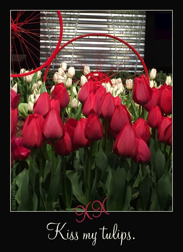 kiss my tulips Mary Kate Kopec