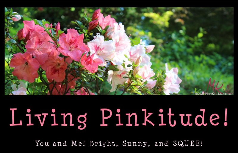 Living Pinkitude Mary Kate Kopec