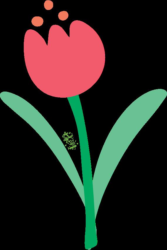 tulip flower. Mary Kate Kopec. Love and Big Hugs.